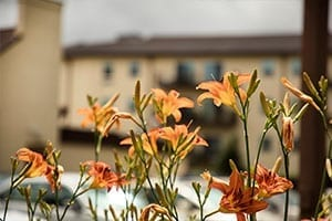 Branan Lodge, Blairsville, GA